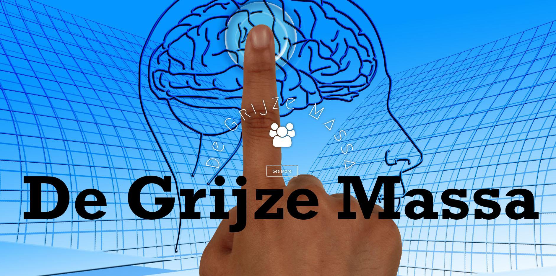 de-grijze-massa1